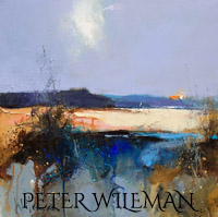 peter_wileman-MawganPorth