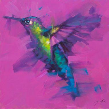 jamel_akib-Hummingbird1