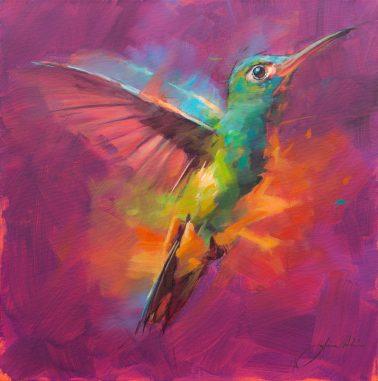 jamel_akib-Hummingbird6