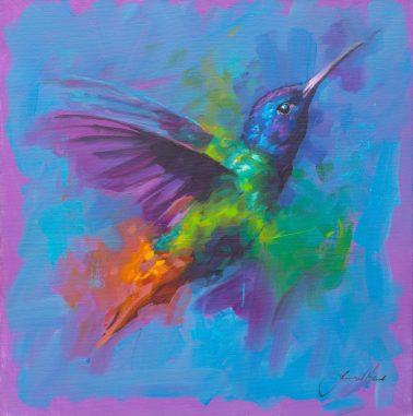 jamel_akib-Hummingbird7