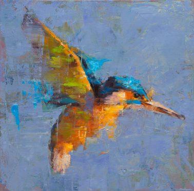 jamel_akib-Kingfisher
