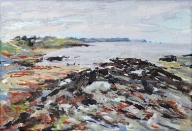 Joe-Webster-Next-Door-Seaweed-in-Portscatho-Harbour